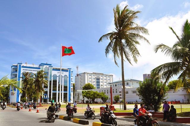 Palme an Strasse in den Malediven